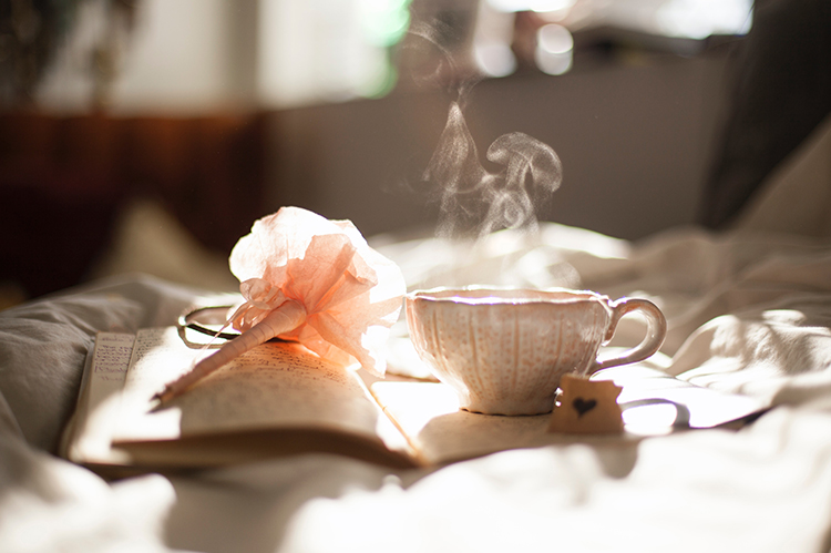 Cup of tea and journal in the morning sun